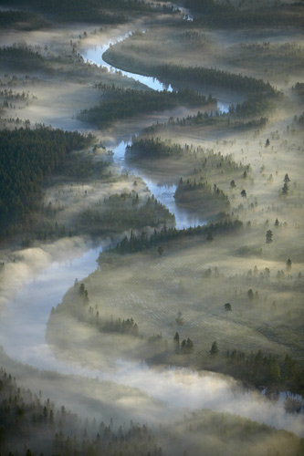 Sweden, Sveg, Harjedalen, fog over river and forest, aerial view