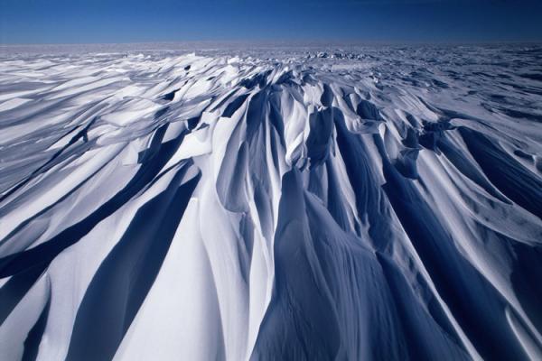 Antarctica, sastrugis formation of snow