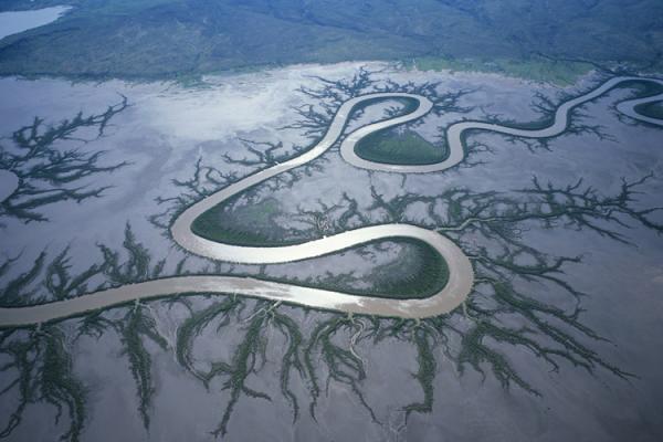 Australia, Kimberley Plain, river winding through mud flat