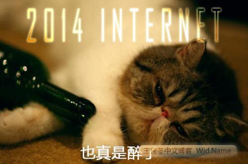 2014-internet.