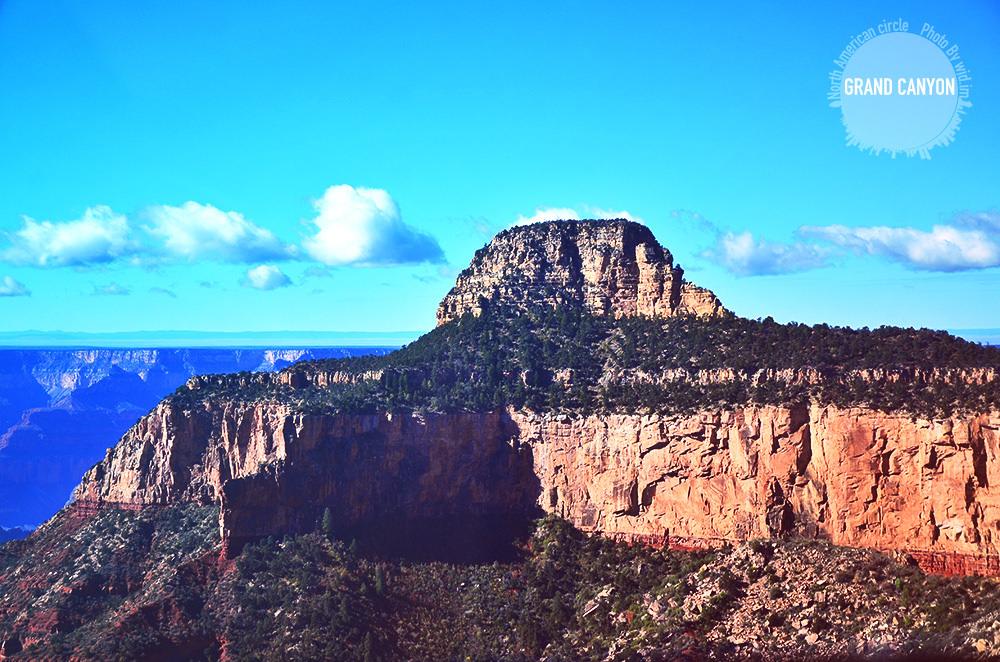 canyon38