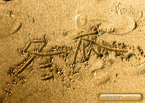 厦门-沙滩-冬瓜